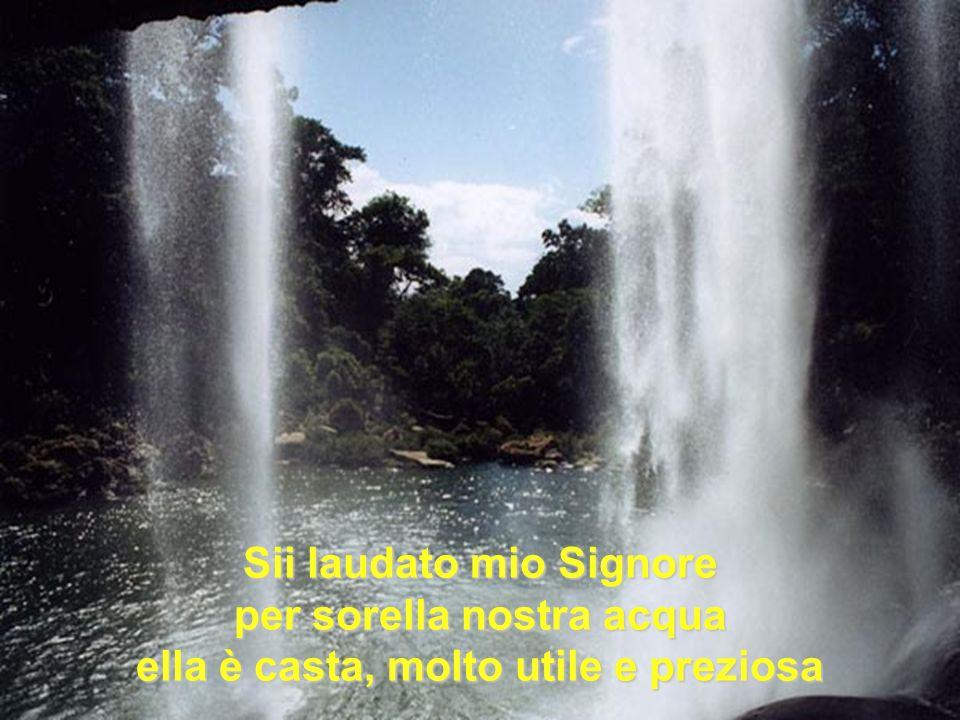 Sii laudato mio Signore per sorella nostra acqua ella è casta, molto utile e preziosa
