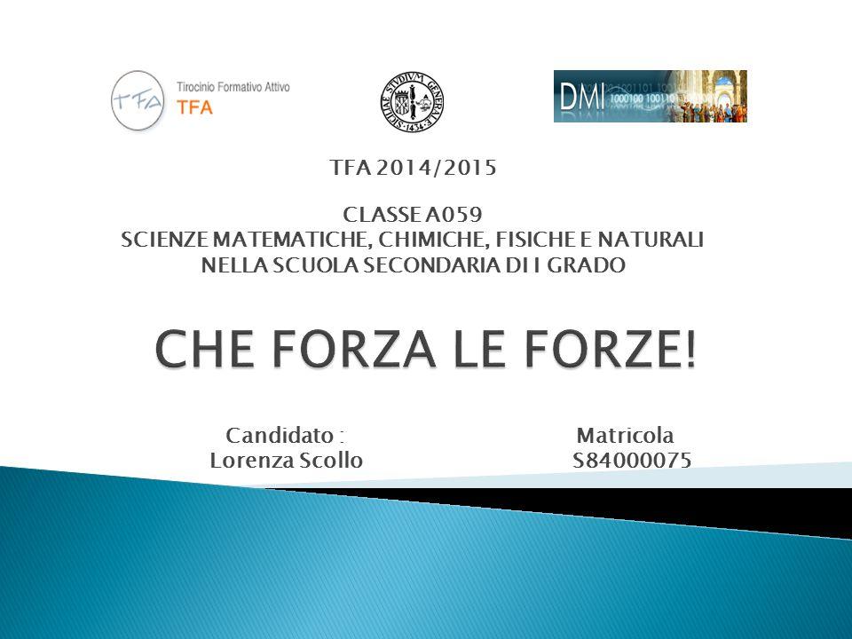 CHE FORZA LE FORZE! TFA 2014/2015 CLASSE A059