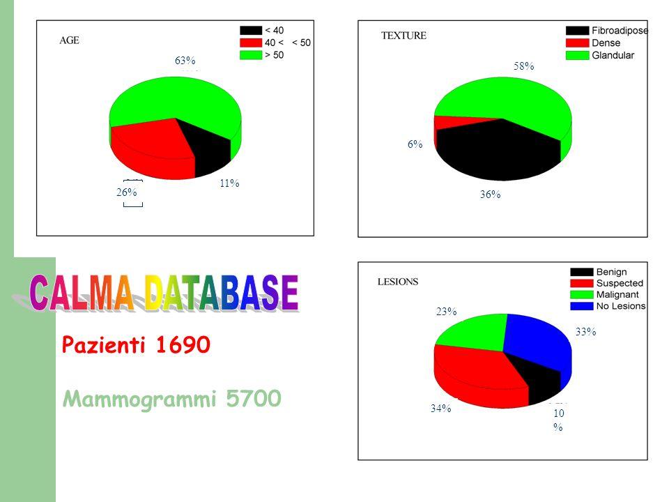 CALMA DATABASE Pazienti 1690 Mammogrammi 5700 63% 58% 6% 11% 26% 36%