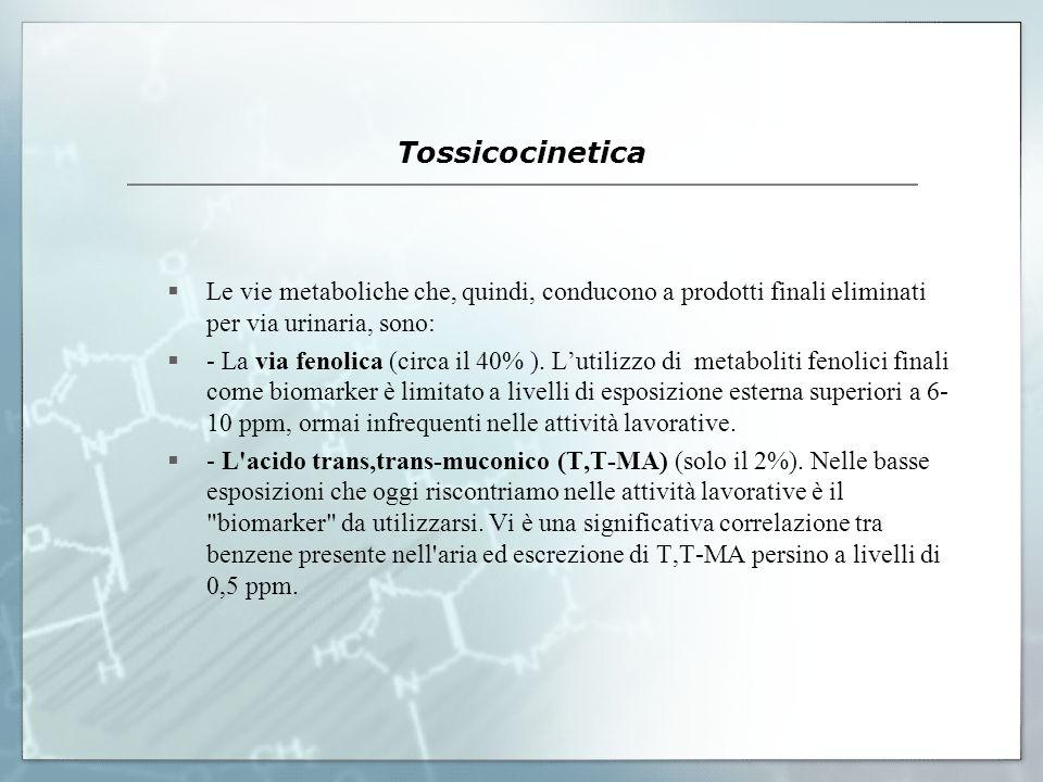 Tossicocinetica Le vie metaboliche che, quindi, conducono a prodotti finali eliminati per via urinaria, sono: