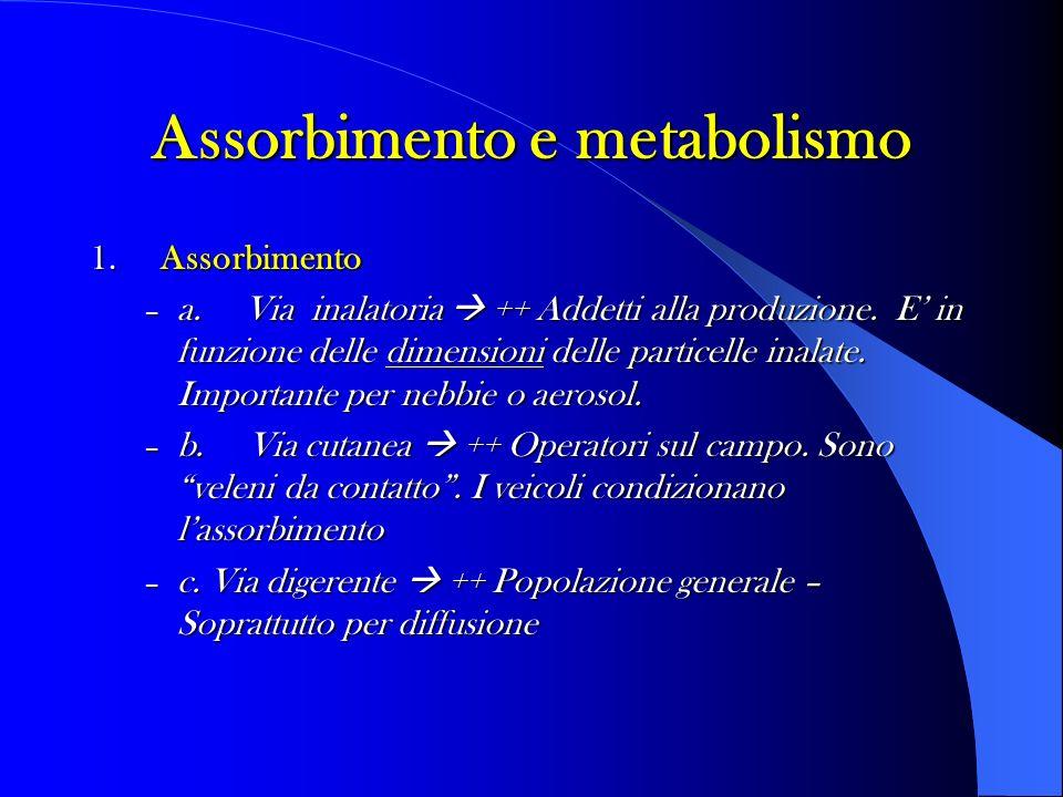 Assorbimento e metabolismo