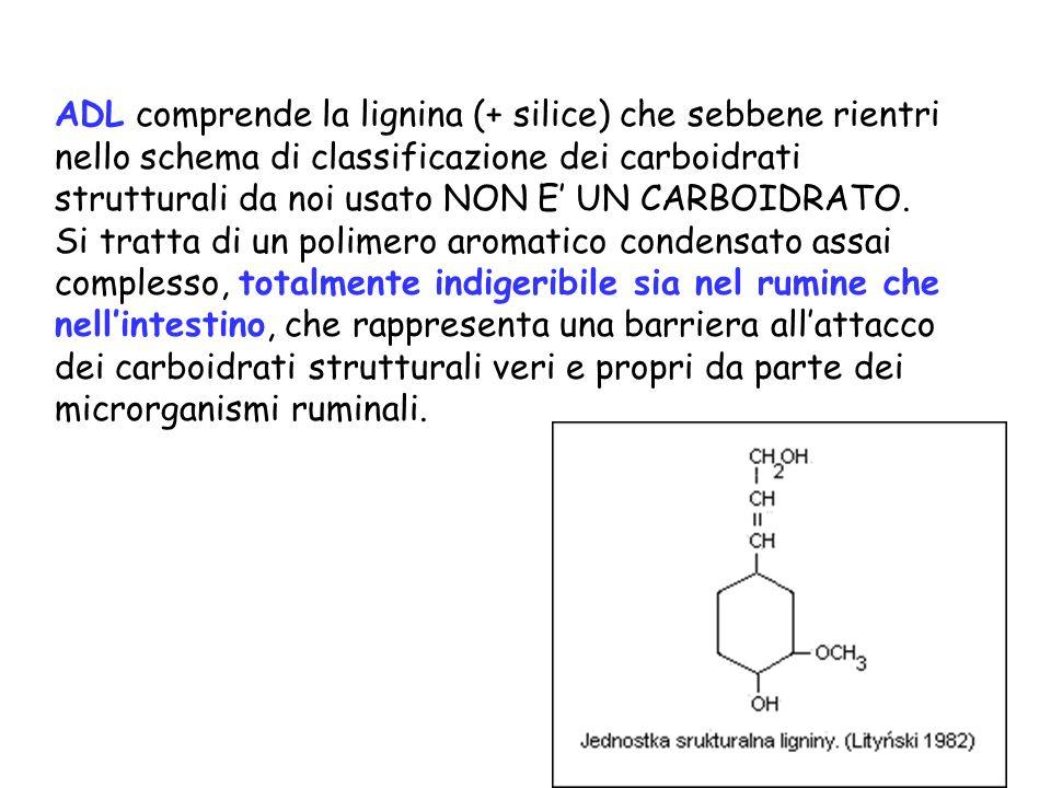 ADL comprende la lignina (+ silice) che sebbene rientri nello schema di classificazione dei carboidrati strutturali da noi usato NON E' UN CARBOIDRATO.