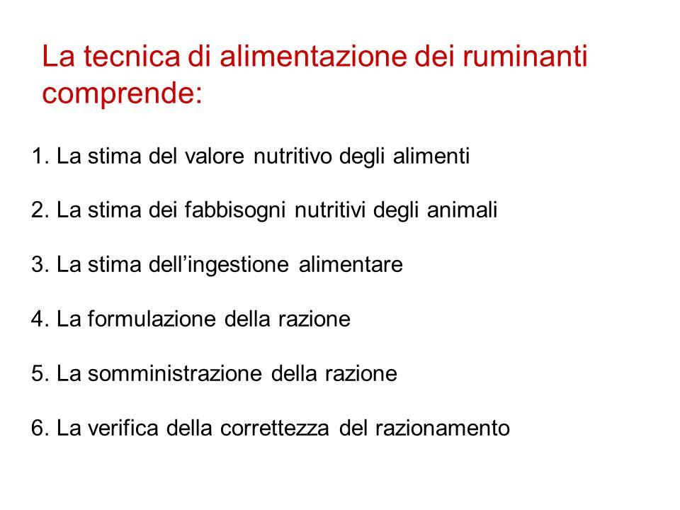 La tecnica di alimentazione dei ruminanti comprende: