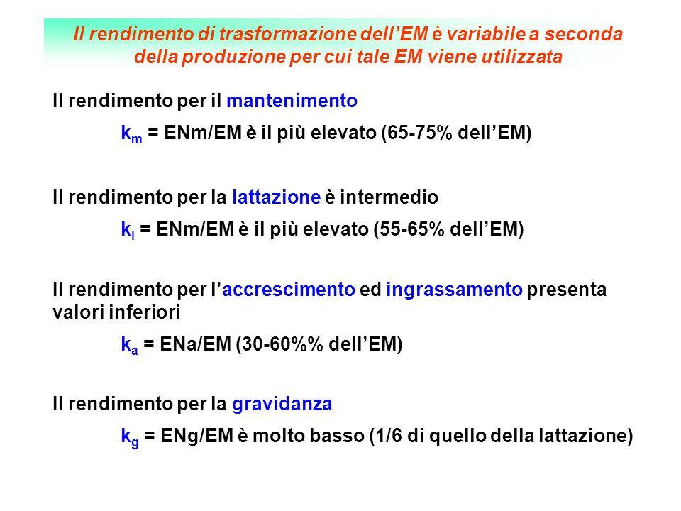 Il rendimento di trasformazione dell'EM è variabile a seconda della produzione per cui tale EM viene utilizzata