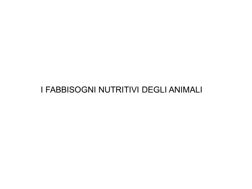 I FABBISOGNI NUTRITIVI DEGLI ANIMALI