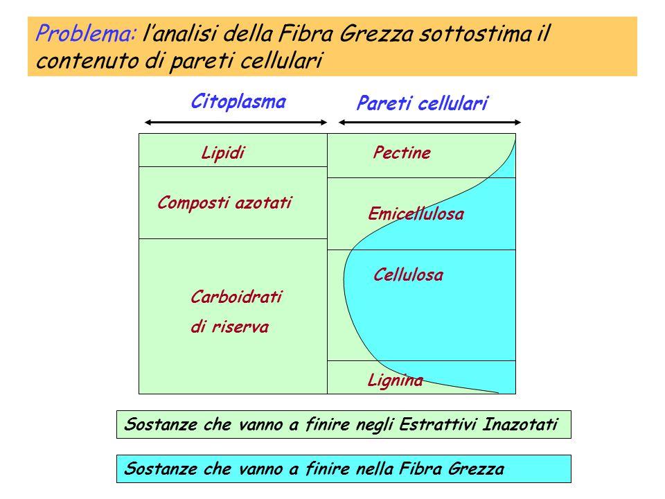Problema: l'analisi della Fibra Grezza sottostima il contenuto di pareti cellulari