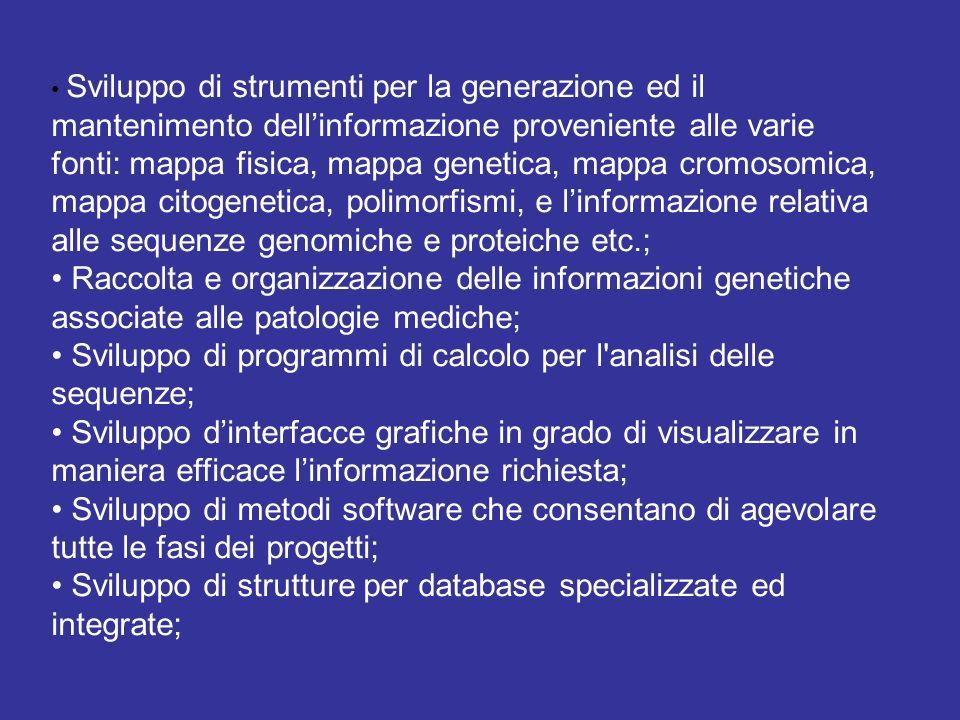 • Sviluppo di programmi di calcolo per l analisi delle sequenze;