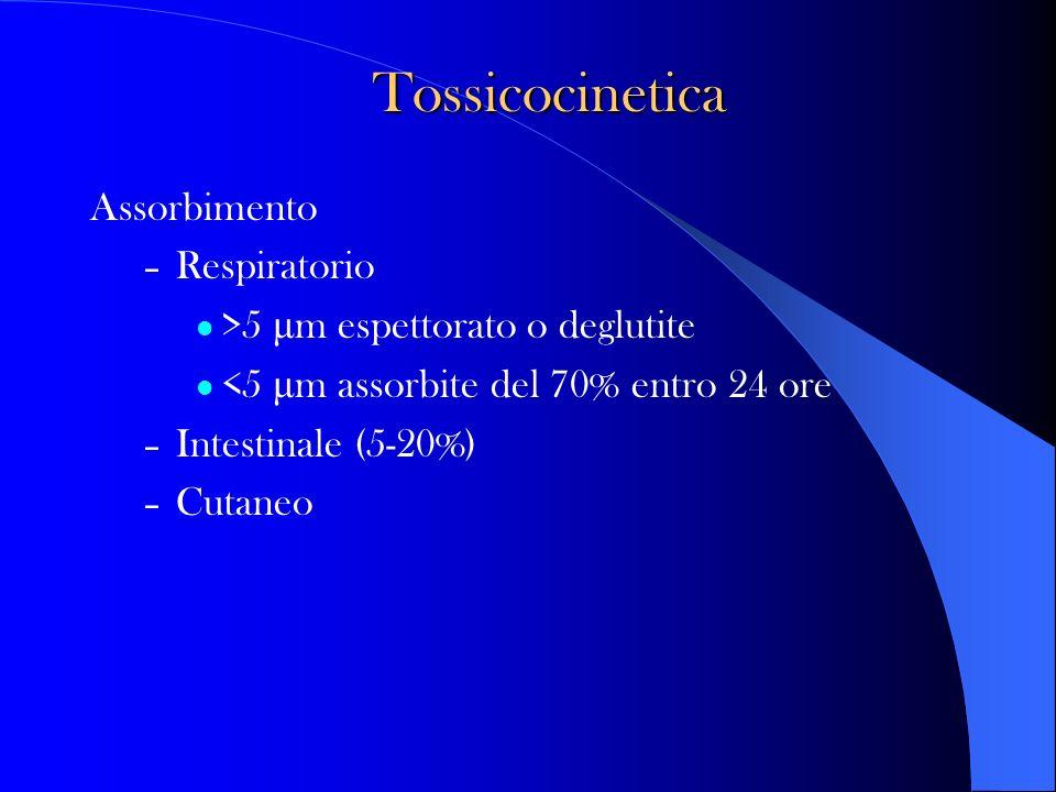 Tossicocinetica Assorbimento Respiratorio