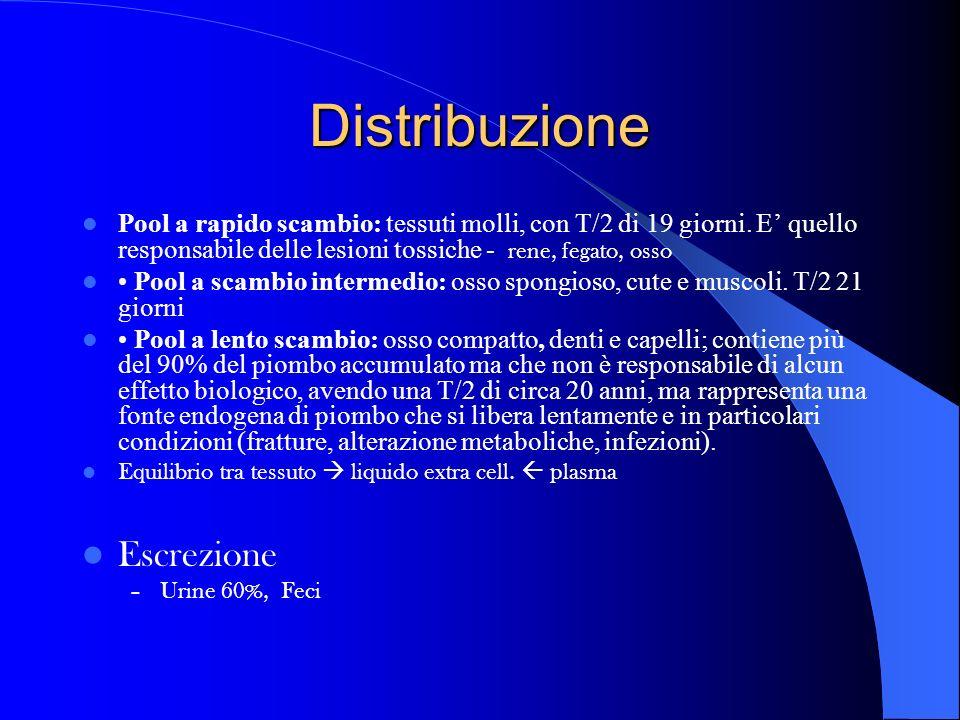 Distribuzione Escrezione