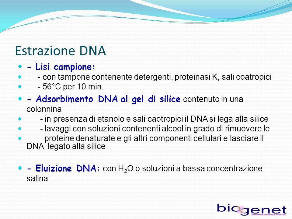 Estrazione DNA - Lisi campione: