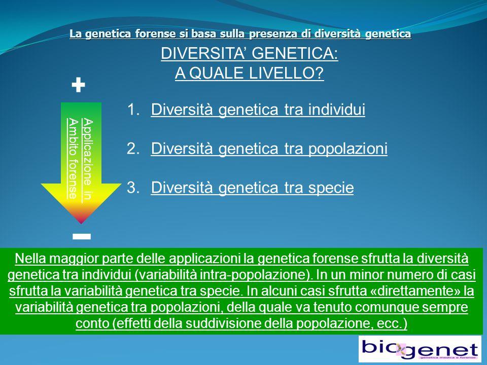 La genetica forense si basa sulla presenza di diversità genetica