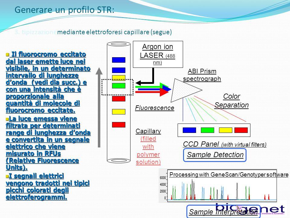 Generare un profilo STR: 3