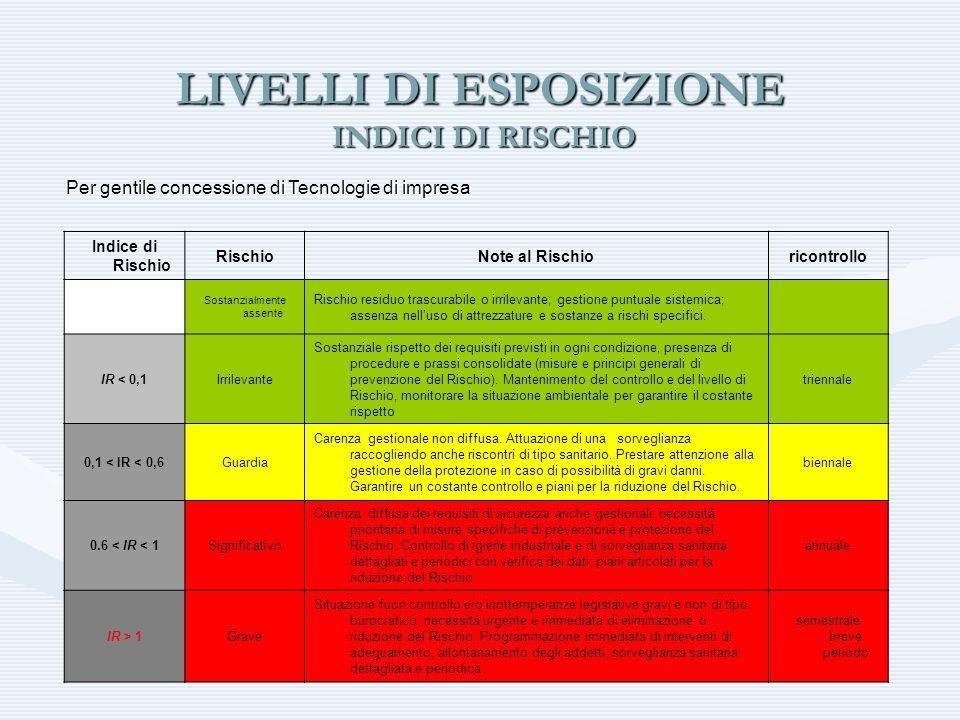 LIVELLI DI ESPOSIZIONE INDICI DI RISCHIO