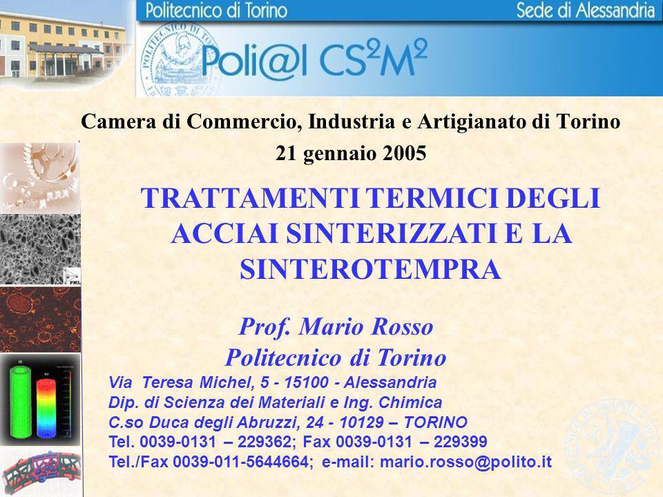 Camera di Commercio, Industria e Artigianato di Torino 21 gennaio 2005