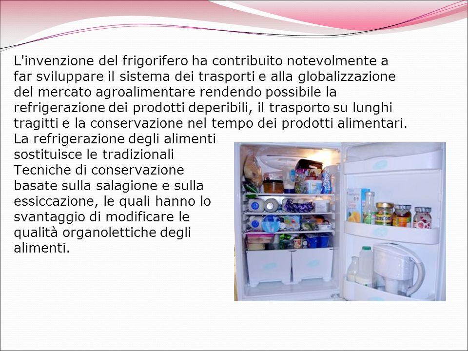 L invenzione del frigorifero ha contribuito notevolmente a far sviluppare il sistema dei trasporti e alla globalizzazione del mercato agroalimentare rendendo possibile la refrigerazione dei prodotti deperibili, il trasporto su lunghi tragitti e la conservazione nel tempo dei prodotti alimentari.