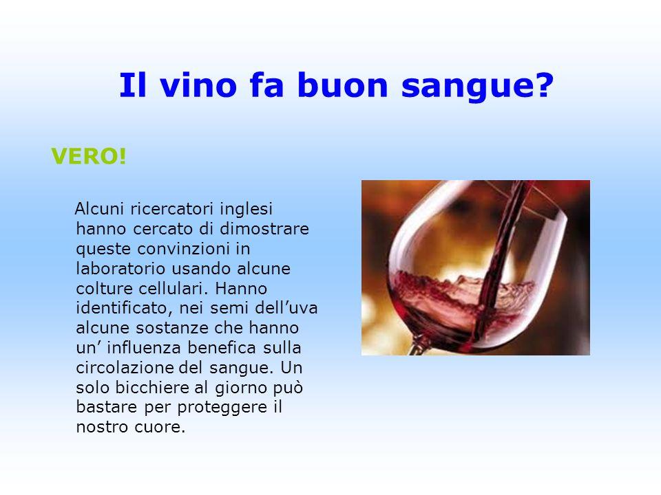 Il vino fa buon sangue VERO!