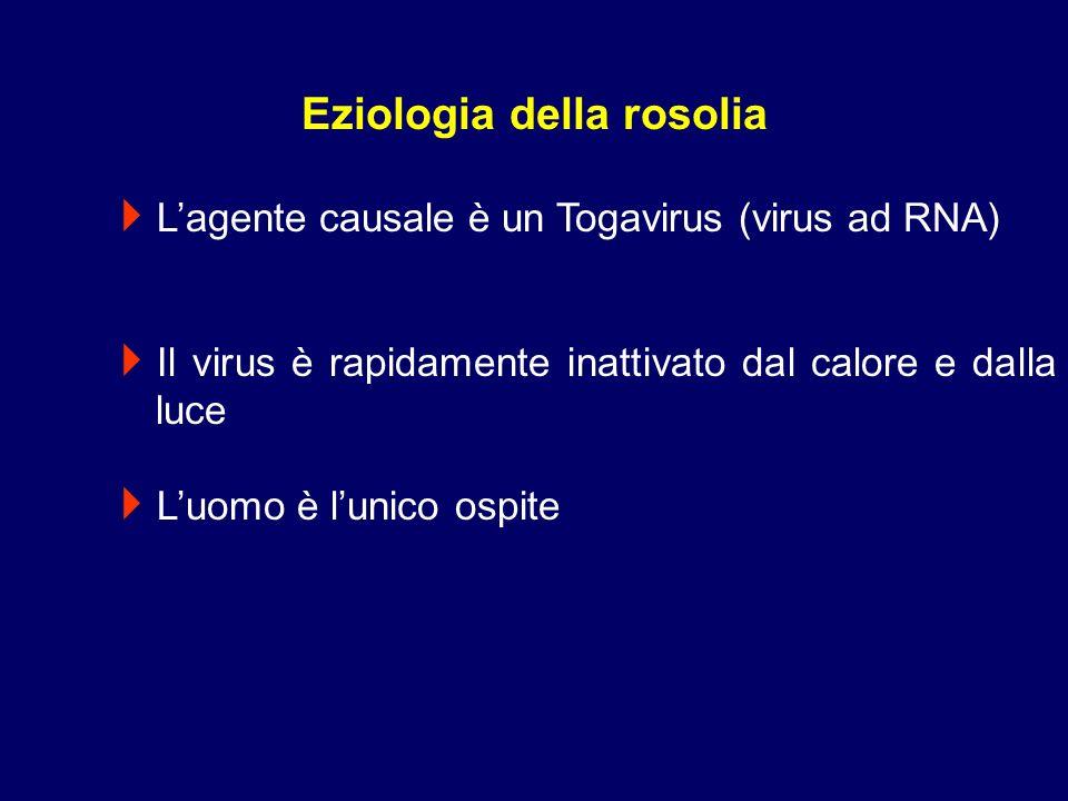 Eziologia della rosolia