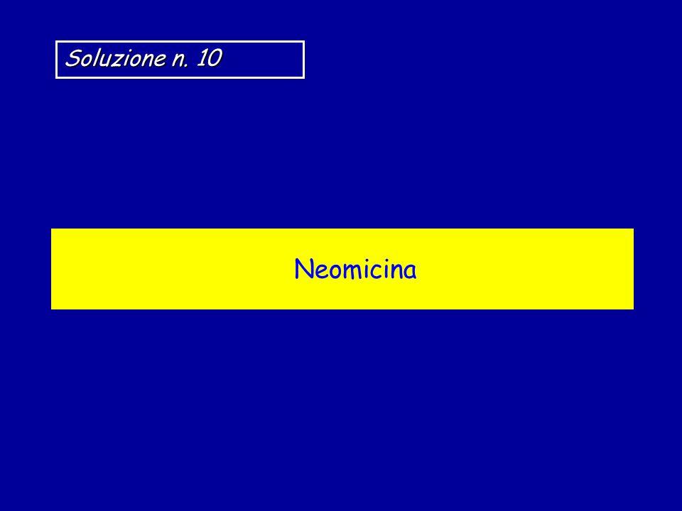 Soluzione n. 10 Neomicina