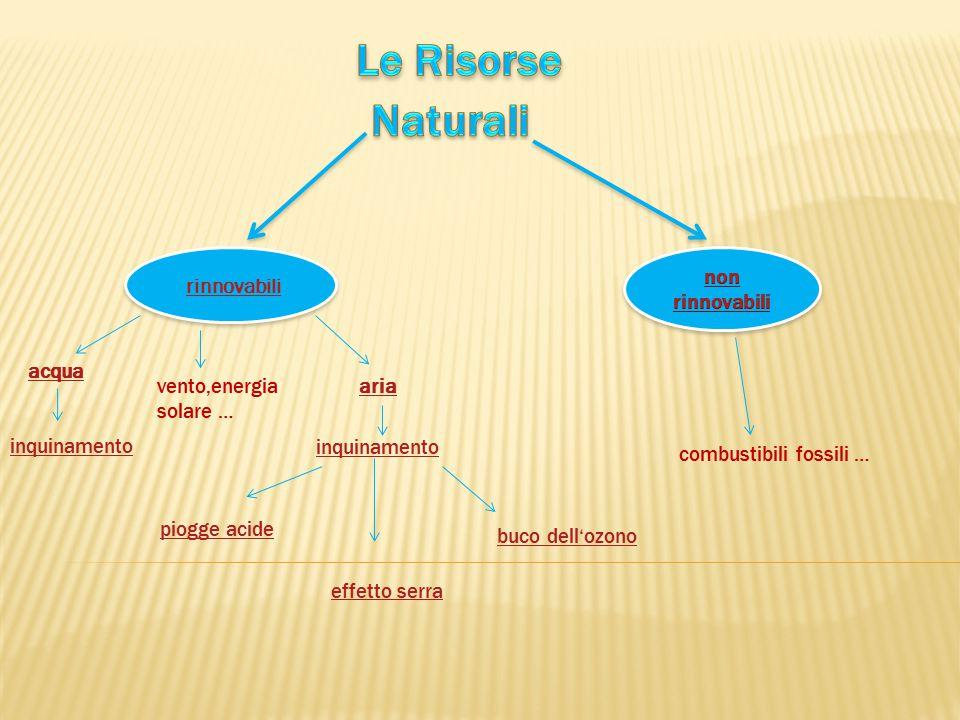 Le Risorse Naturali rinnovabili non rinnovabili acqua