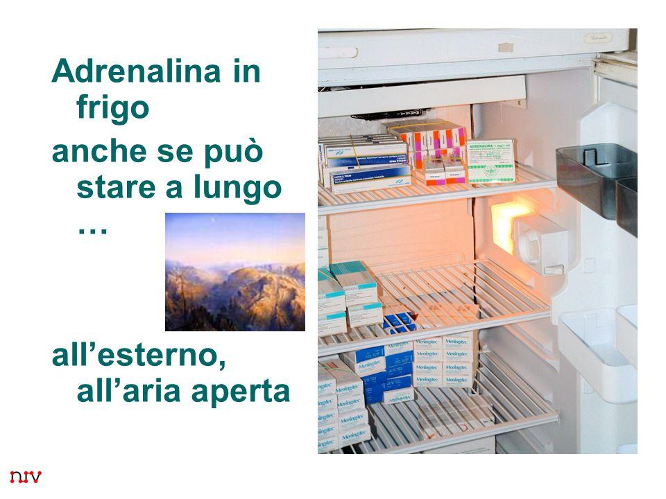 Adrenalina in frigo anche se può stare a lungo … all'esterno, all'aria aperta