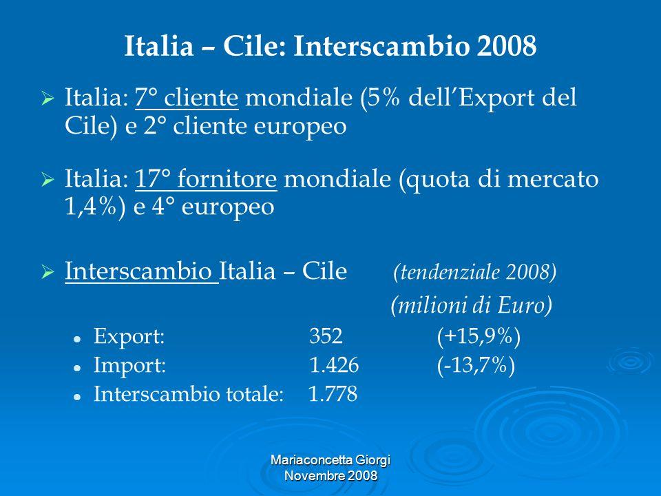 Italia – Cile: Interscambio 2008