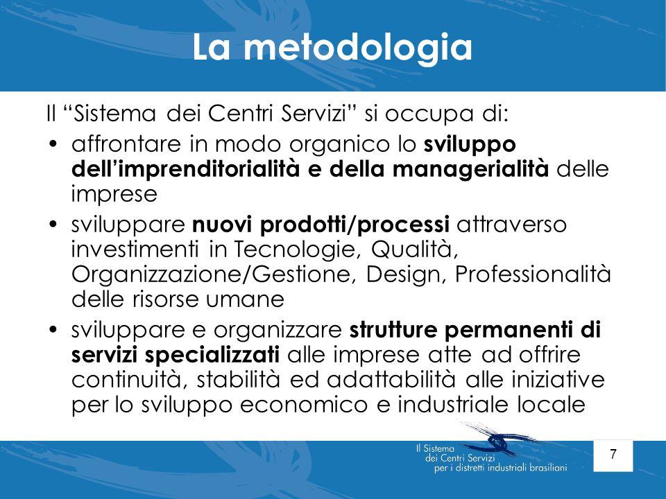 La metodologia Il Sistema dei Centri Servizi si occupa di: