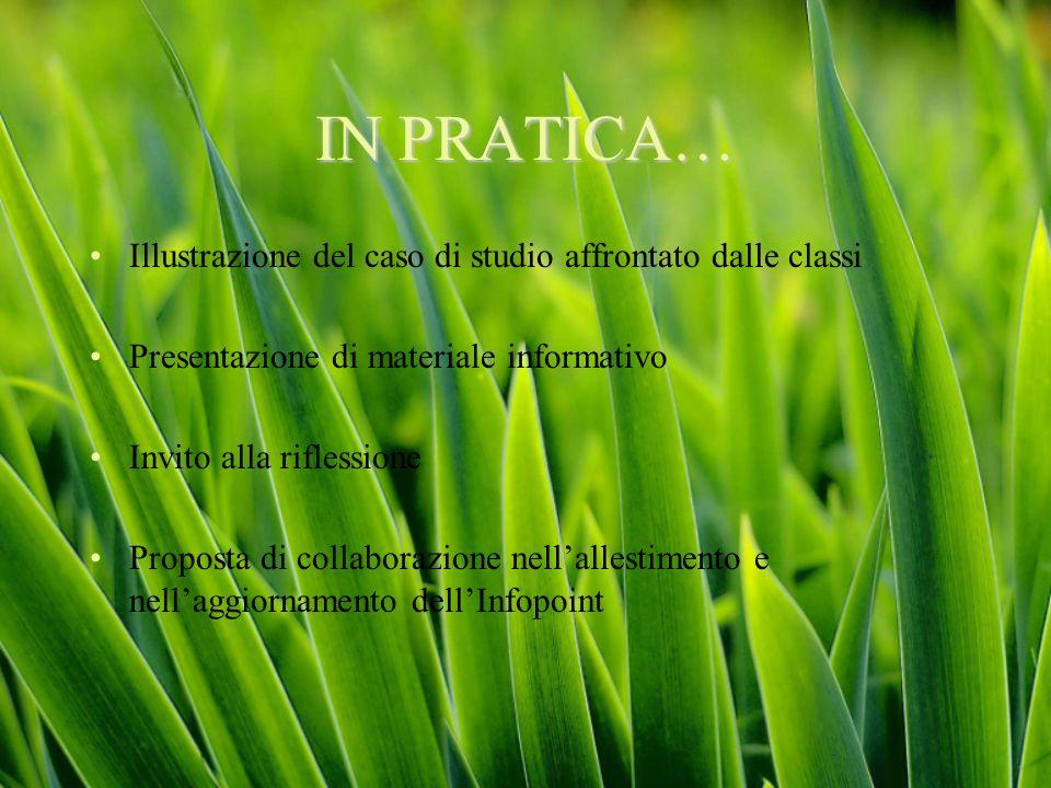 IN PRATICA… Illustrazione del caso di studio affrontato dalle classi