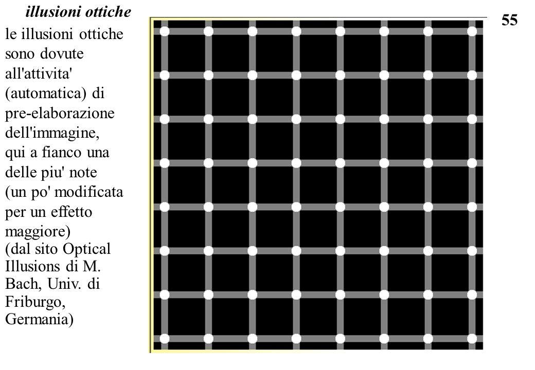 illusioni ottichele illusioni ottiche sono dovute all attivita (automatica) di pre-elaborazione dell immagine,
