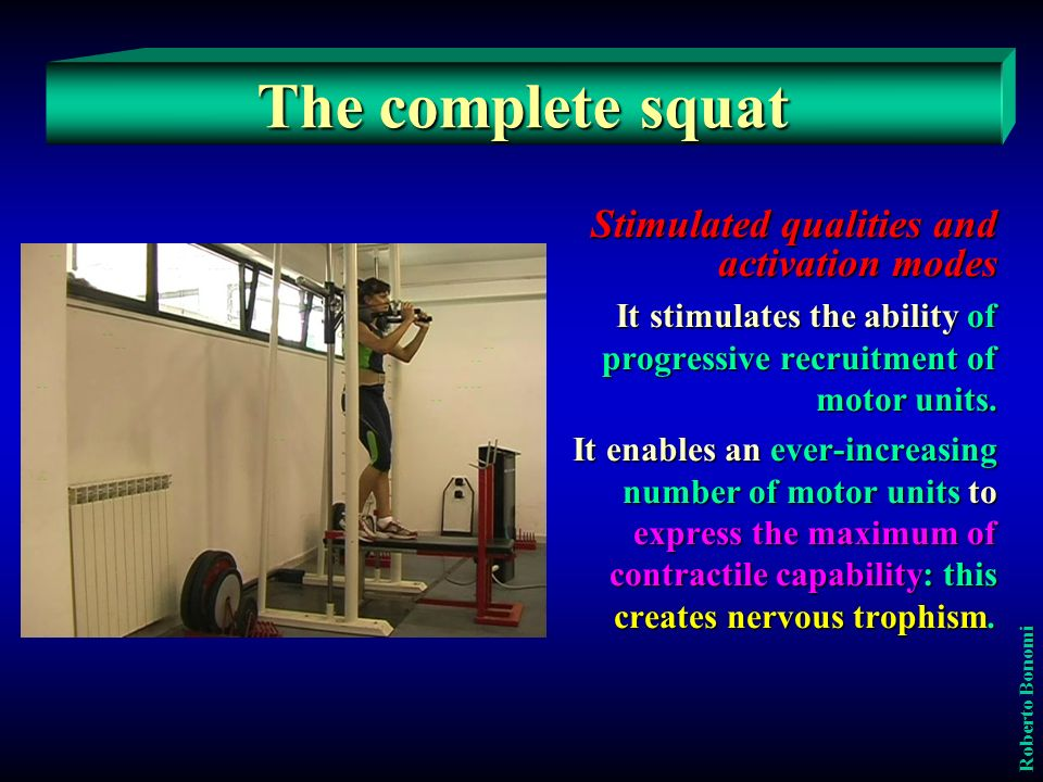 The complete squat Stimulated qualities and activation modes