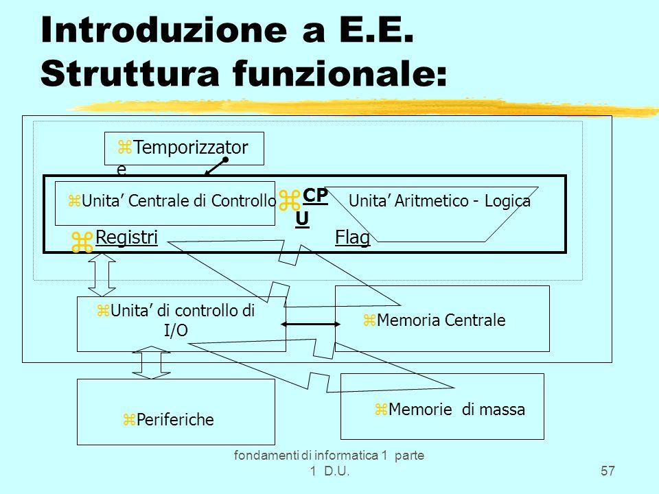 Introduzione a E.E. Struttura funzionale: