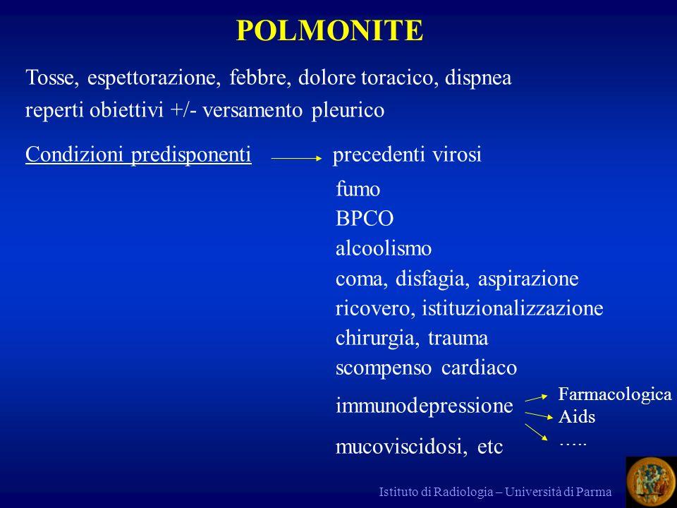 POLMONITE Tosse, espettorazione, febbre, dolore toracico, dispnea