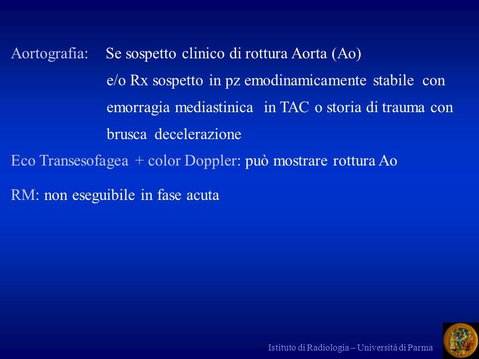 Aortografia: Se sospetto clinico di rottura Aorta (Ao)