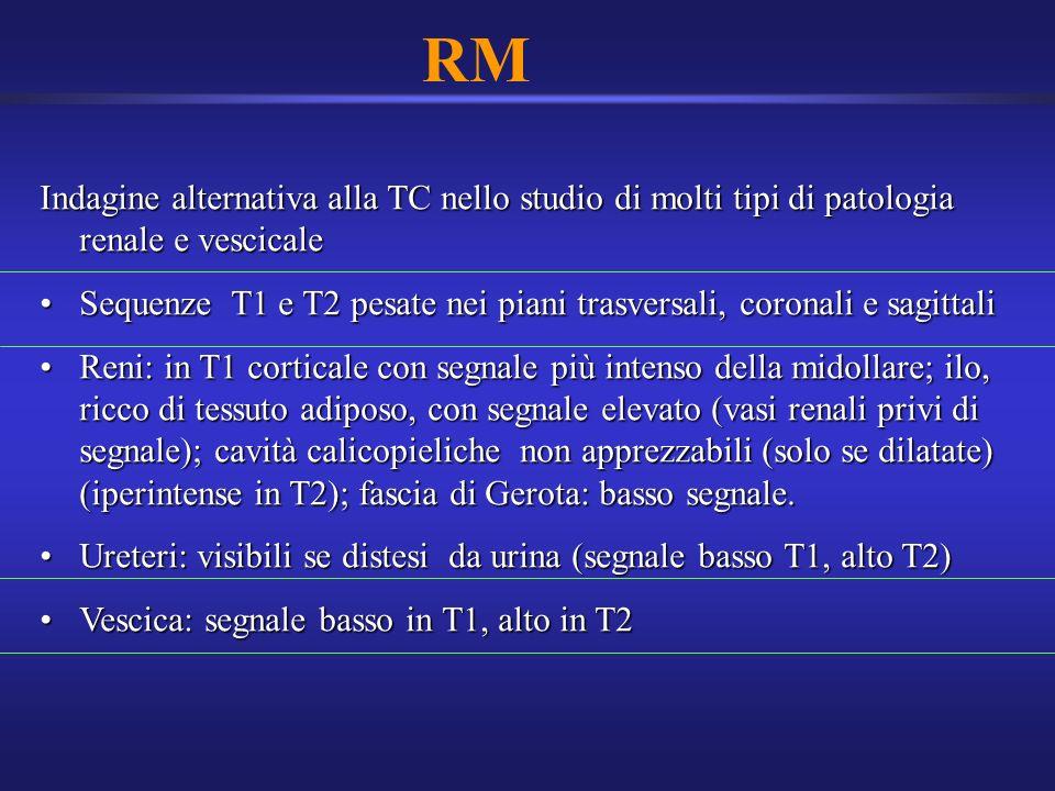 RM Indagine alternativa alla TC nello studio di molti tipi di patologia renale e vescicale.