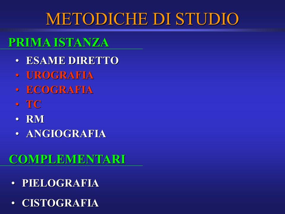 METODICHE DI STUDIO PRIMA ISTANZA COMPLEMENTARI ESAME DIRETTO