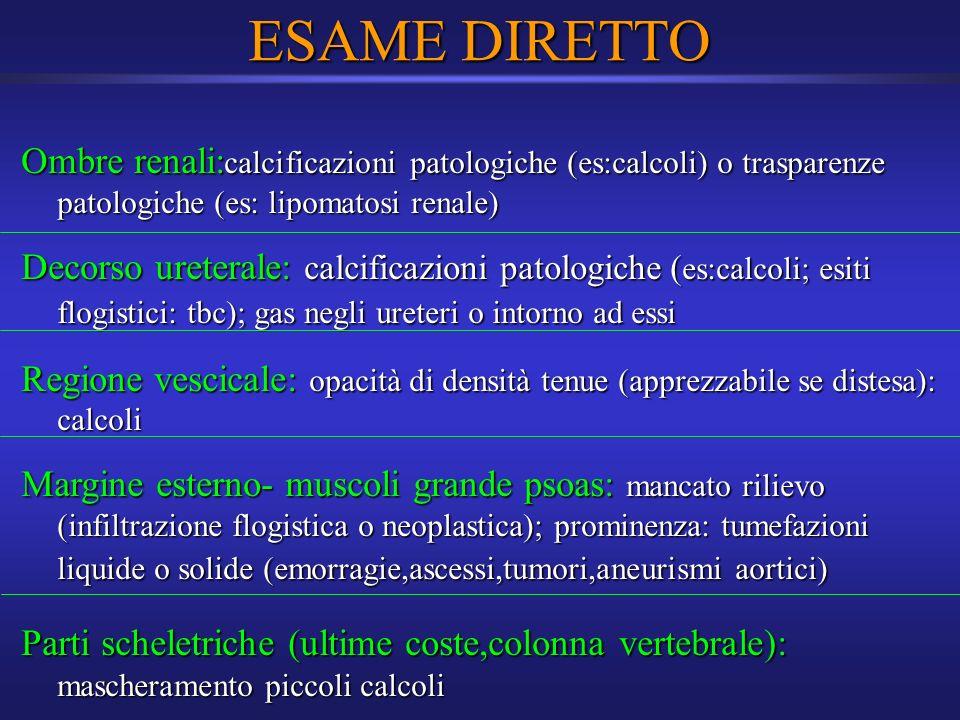 ESAME DIRETTO Ombre renali:calcificazioni patologiche (es:calcoli) o trasparenze patologiche (es: lipomatosi renale)