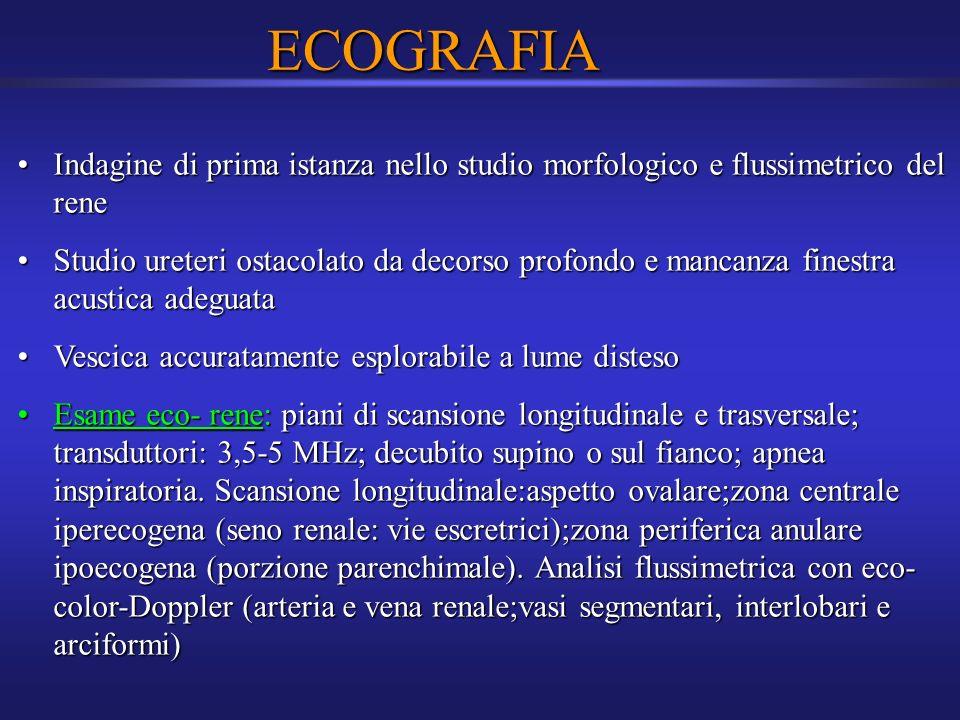 ECOGRAFIA Indagine di prima istanza nello studio morfologico e flussimetrico del rene.
