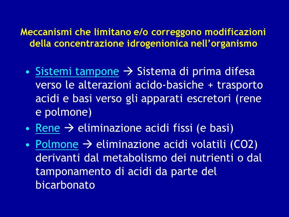 Rene  eliminazione acidi fissi (e basi)