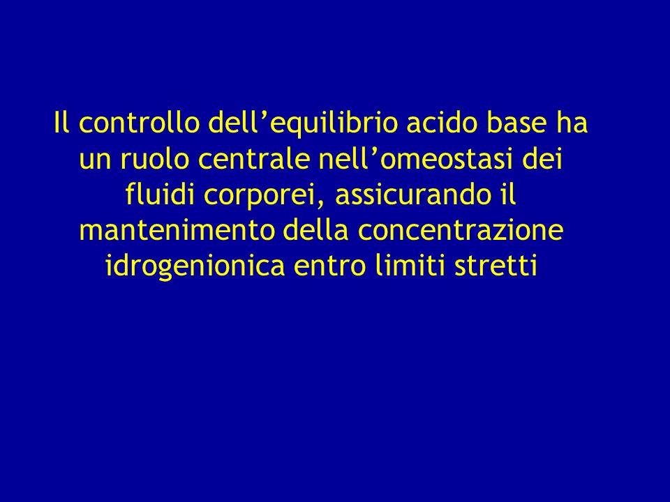 Il controllo dell'equilibrio acido base ha un ruolo centrale nell'omeostasi dei fluidi corporei, assicurando il mantenimento della concentrazione idrogenionica entro limiti stretti
