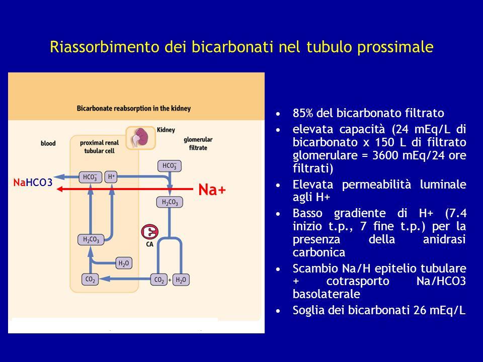 Riassorbimento dei bicarbonati nel tubulo prossimale