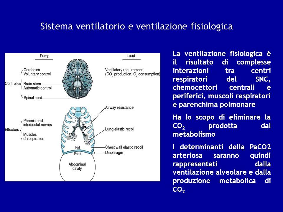 Sistema ventilatorio e ventilazione fisiologica