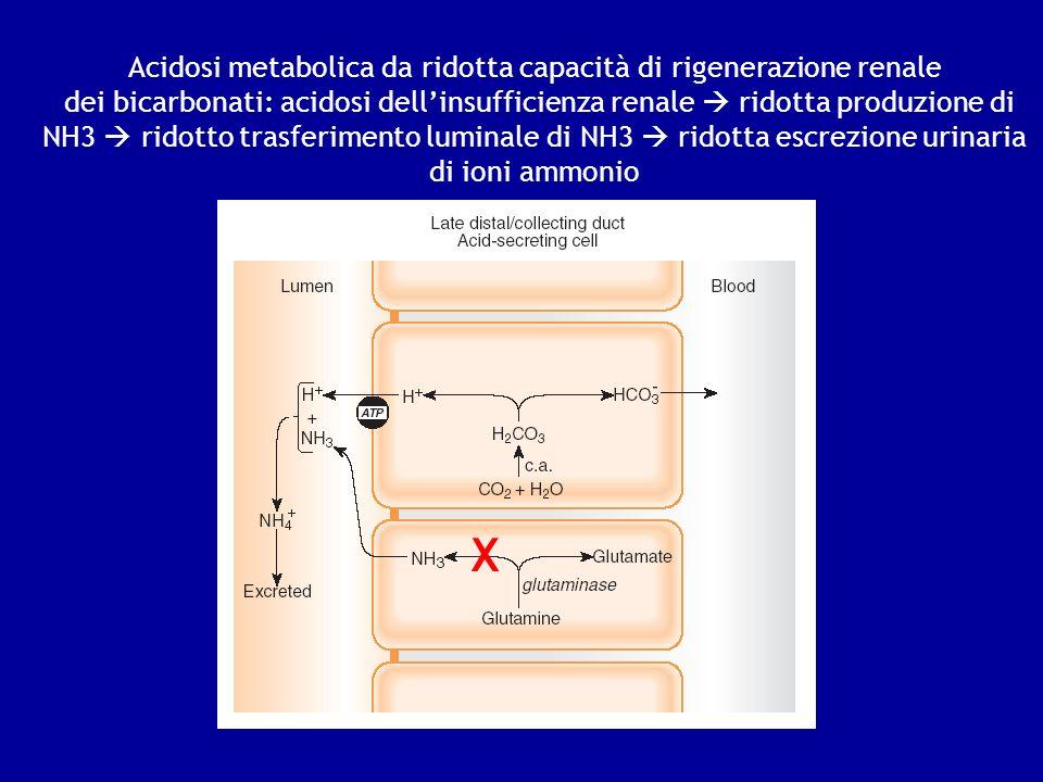 Acidosi metabolica da ridotta capacità di rigenerazione renale