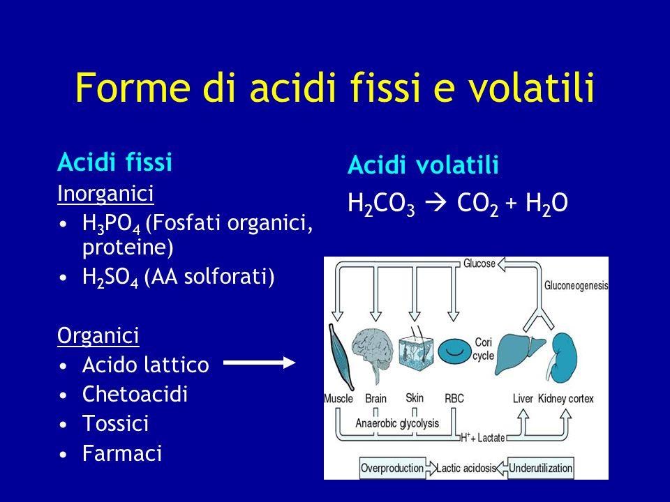 Forme di acidi fissi e volatili