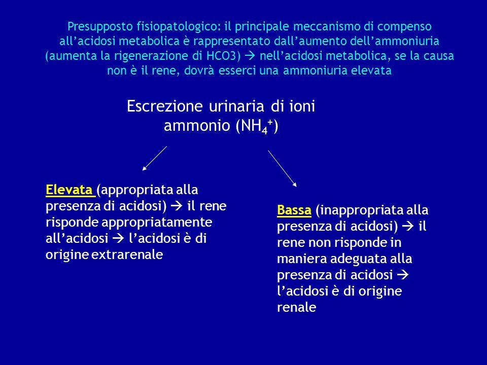 Escrezione urinaria di ioni ammonio (NH4+)