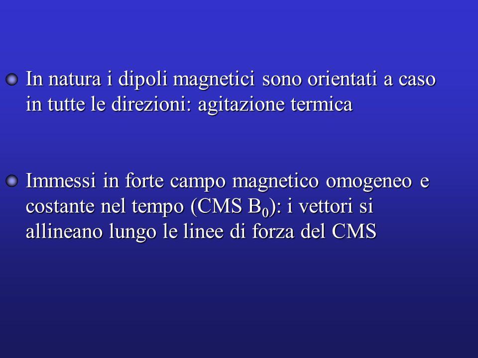 In natura i dipoli magnetici sono orientati a caso in tutte le direzioni: agitazione termica