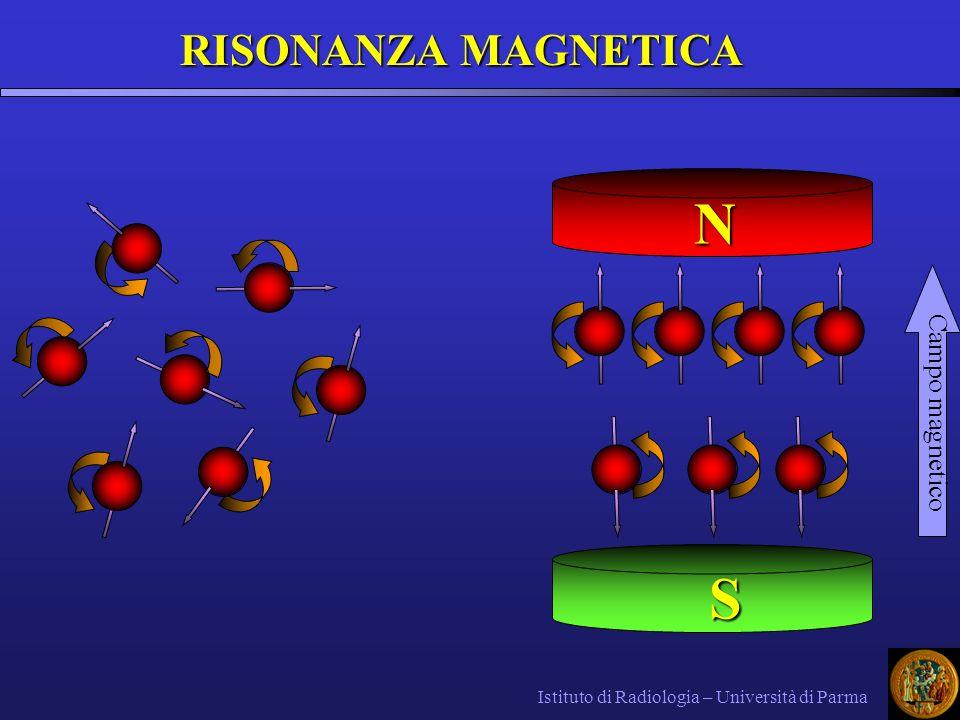N S RISONANZA MAGNETICA Campo magnetico