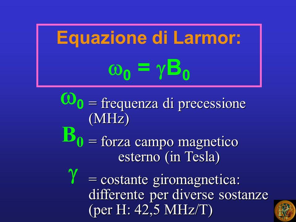 0 0 = B0 B0  Equazione di Larmor: = frequenza di precessione (MHz)