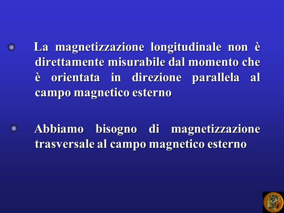 La magnetizzazione longitudinale non è direttamente misurabile dal momento che è orientata in direzione parallela al campo magnetico esterno