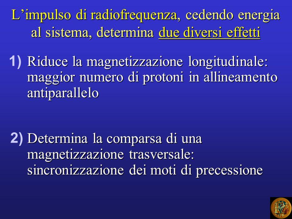 L'impulso di radiofrequenza, cedendo energia al sistema, determina due diversi effetti