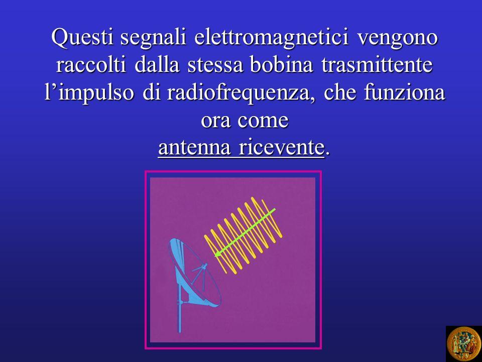 Questi segnali elettromagnetici vengono raccolti dalla stessa bobina trasmittente l'impulso di radiofrequenza, che funziona ora come