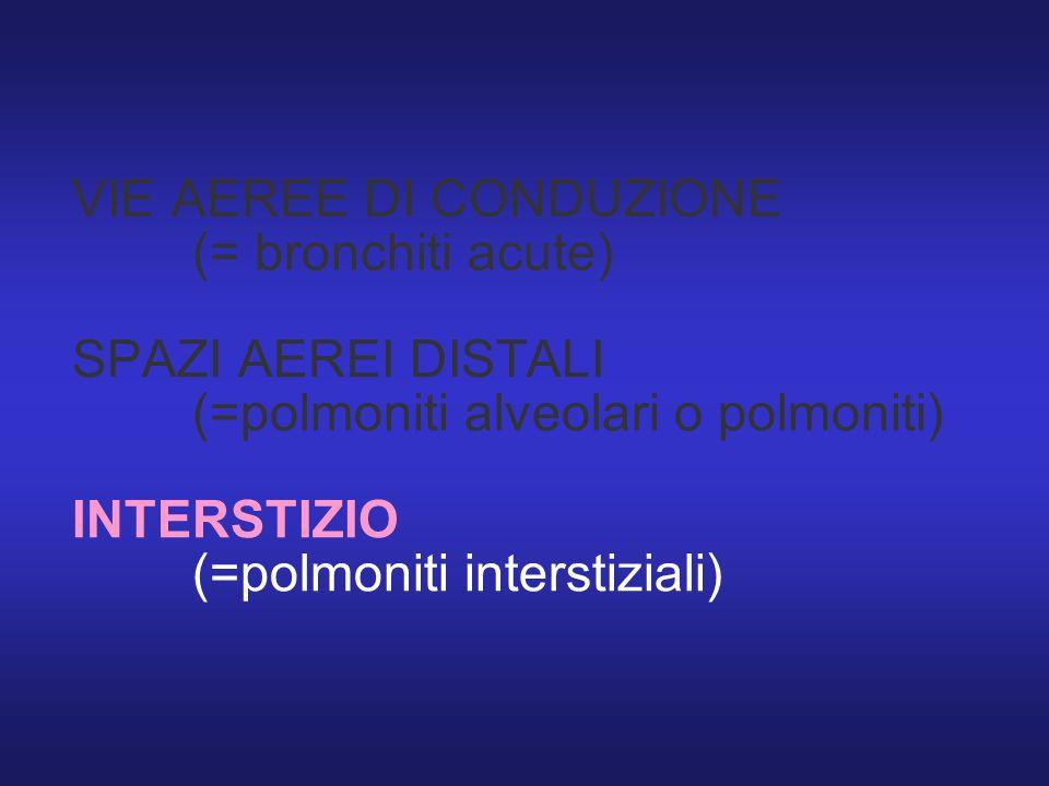 VIE AEREE DI CONDUZIONE. (= bronchiti acute) SPAZI AEREI DISTALI